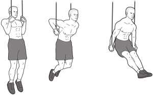 muscle-up-2801