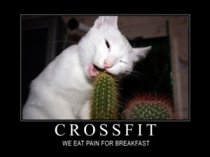 crossfit-pain-478x358